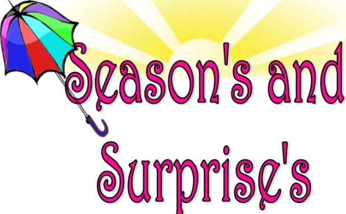Seasons and Surprises Subscription Box