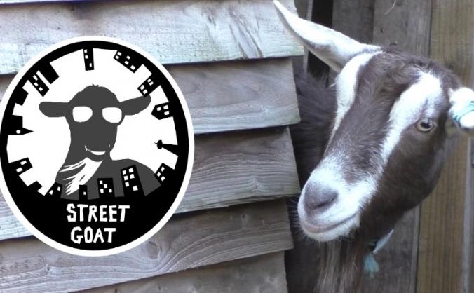 Street Goat
