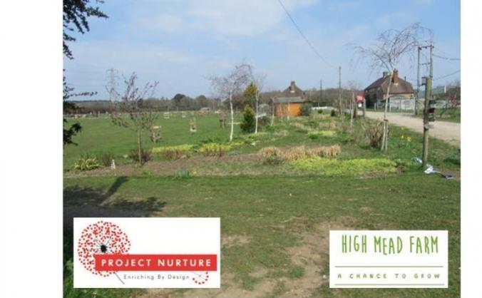 High Mead Farm therapy garden