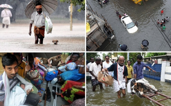 Chennai Flood Relief