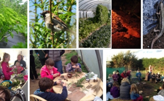 Newlina Eco-Gardens Community Wild Garden Project