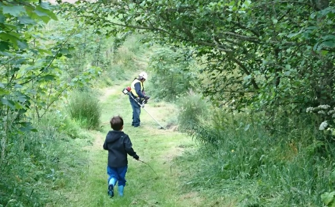 Cove Woodland Trust