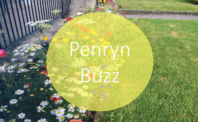 Penryn Buzz Planting Project