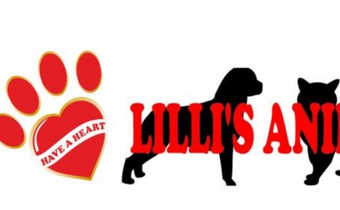 Lilli's Animal Rescues