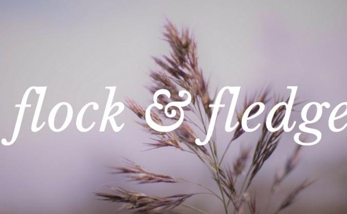 Flock & Fledge Community