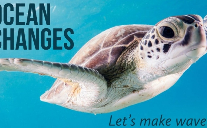 Ocean Changes - Beach Clean funding