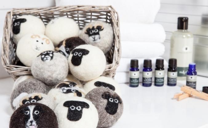 LITTLE BEAU SHEEP