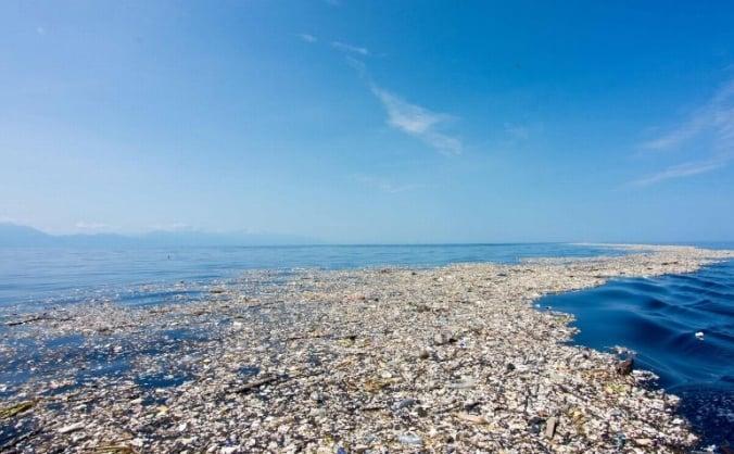 Help clean the seas of plastic rubbish