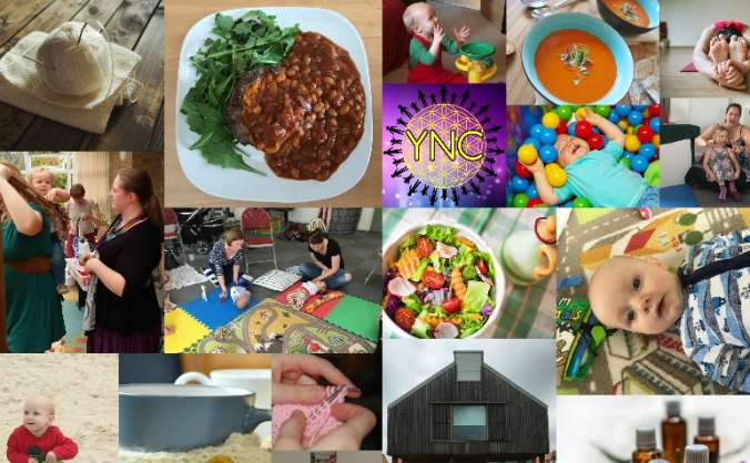 York Nurturing Community (YNC)