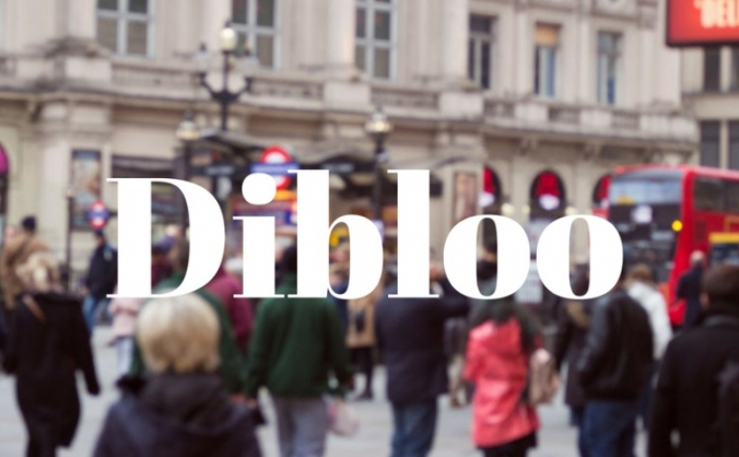 Dibloo - Empowering Small Businesses