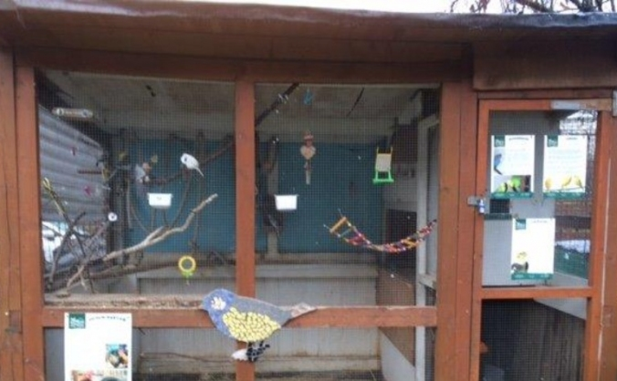 A new home for the Birds at Vauxhall City Farm
