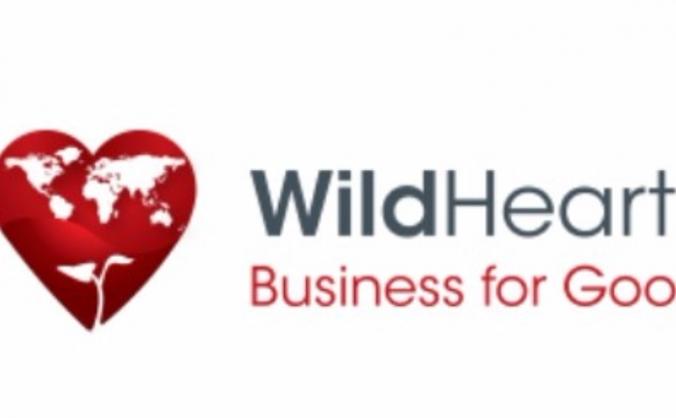 Microtyco for Wildhearts