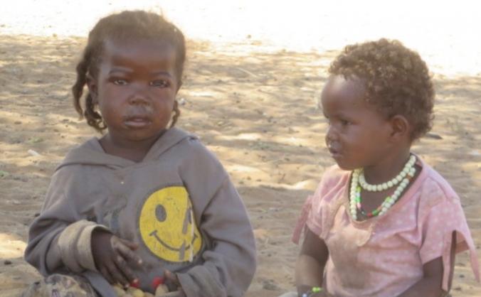 Urgent Appeal - Help Stop Famine in Darfur