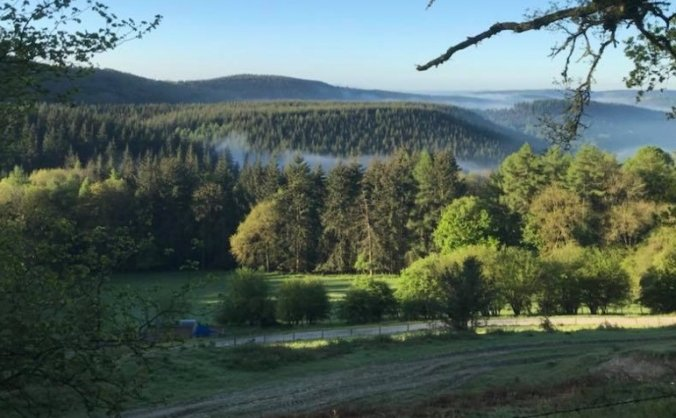 Save our Mortimer Forest