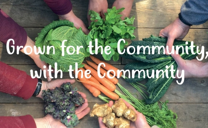 Powering Farnham Community Farm Forward