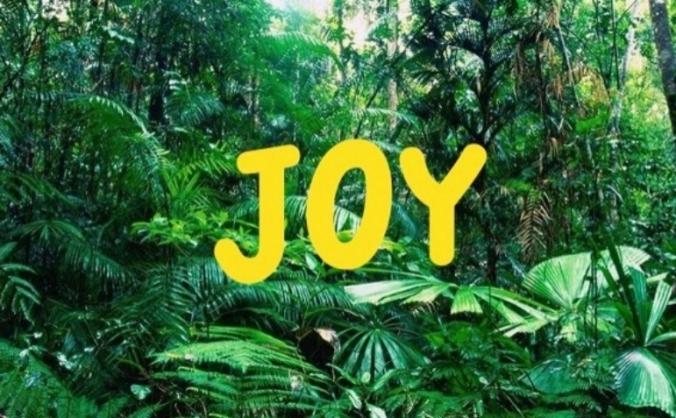 Joy! Taste the evolution of drinking