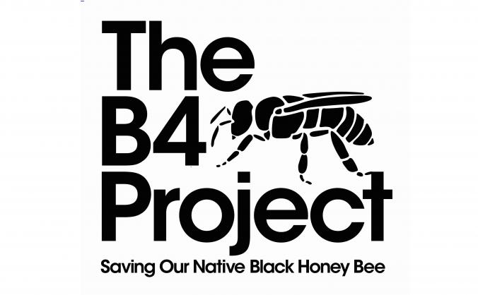 Saving our Native Honey Bee in Cornwall.