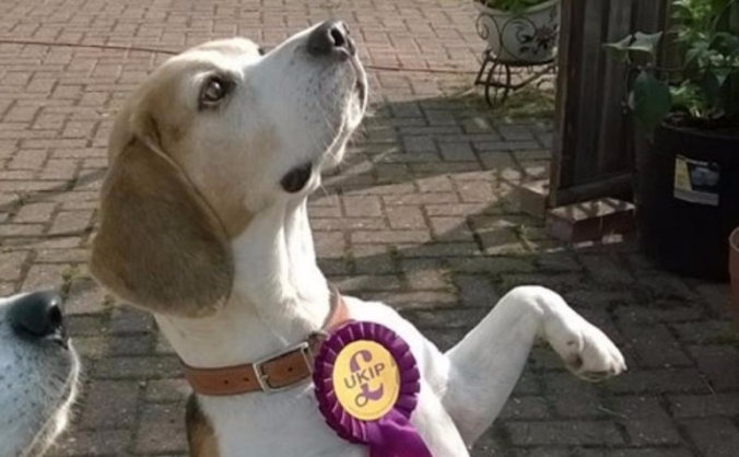 Support UKIP Gainsborough, promoting a LEAVE Vote