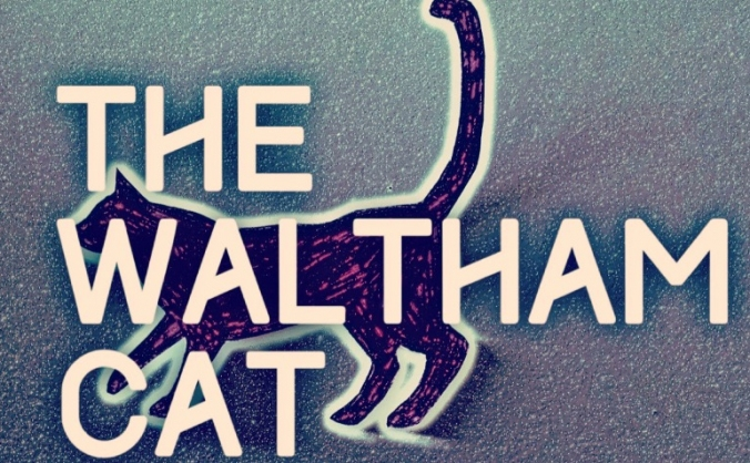 Official print launch of The Waltham Cat
