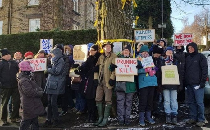 Sheffield Street Trees Legal Fund 2018 3