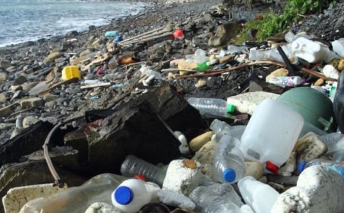 Big Dorset sea clean up