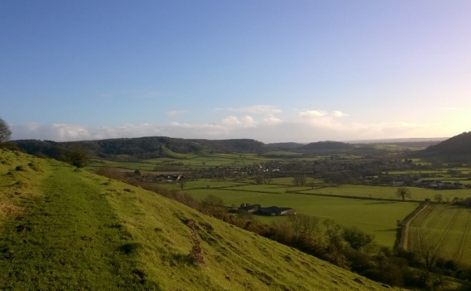 Protect the butterflies of the Polden Hills
