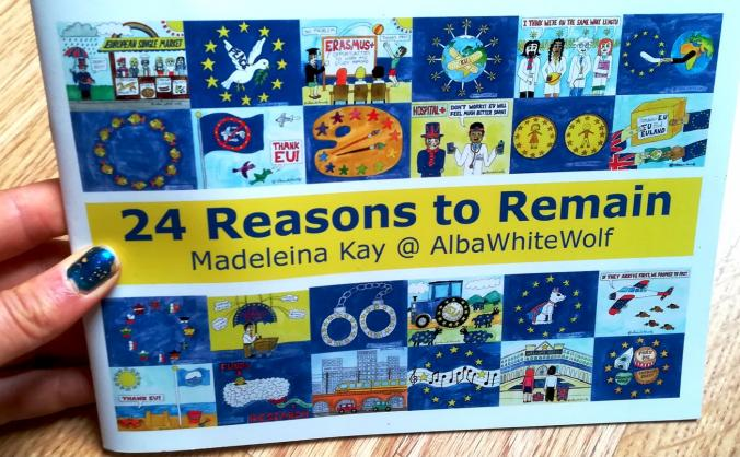 24 Reasons to Remain Booklets