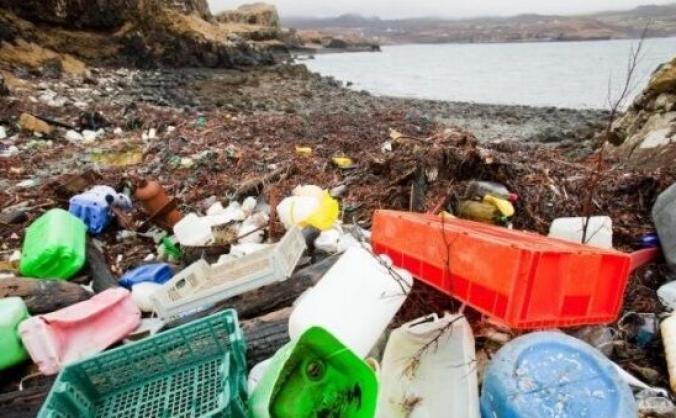 Fight the Plastic