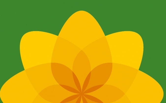 Plaid Cymru. Making OUR countdown HUGE!