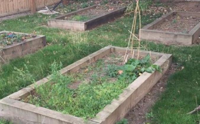 Cossington Primary School - Peace Garden