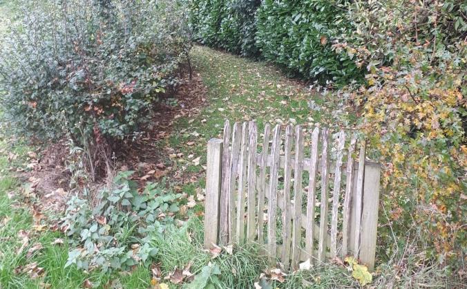The Bee Happy Garden @ Ballycraigy Primary