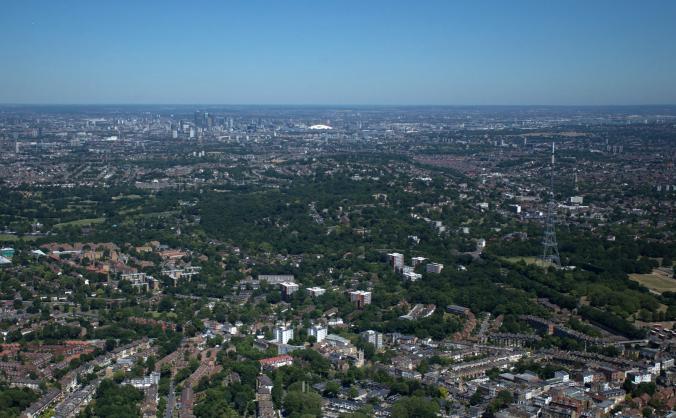 Let's make London greener, healthier and wilder!