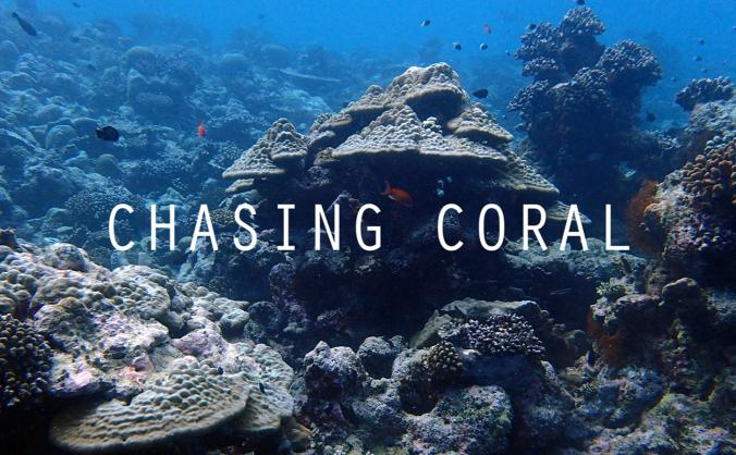 Chasing Coral : A community screening & fundraiser