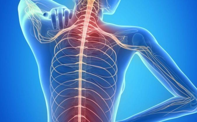 Help me get the Chiro or Osteopathy I need.