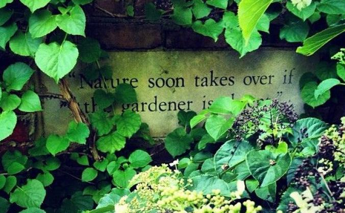 Nature's takeover - RHS Flower Show Cardiff 2019