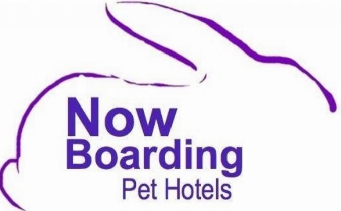 Now Boarding Pet Hotels