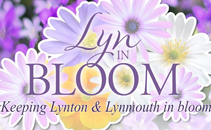 Lyn in Bloom