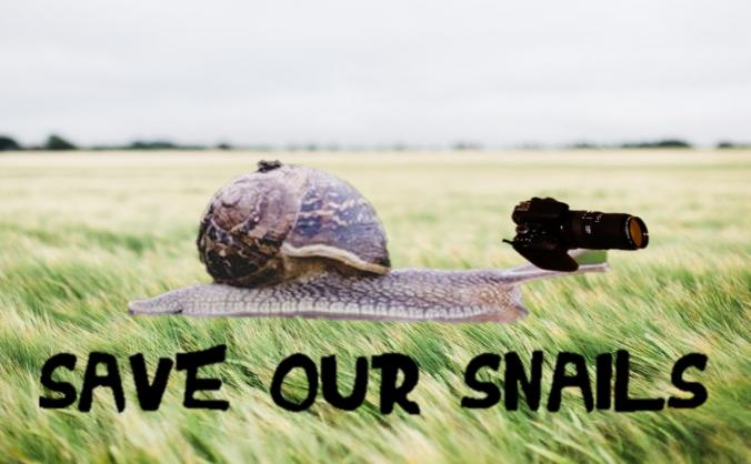 Save Our Snails (Short Film)