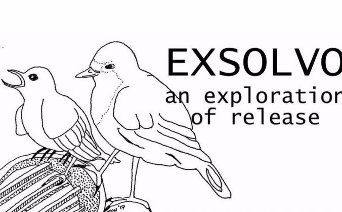 EXSOLVO - an exploration of release