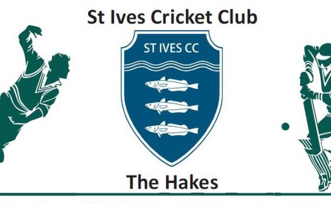 St Ives Cricket Club Nets Project