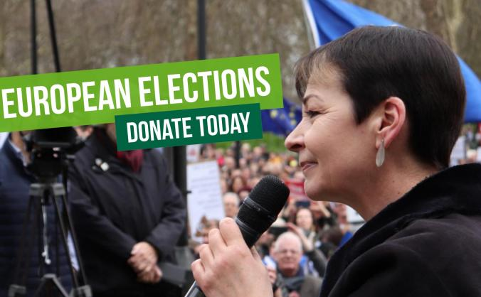 Urgent: support Greens in the Euro elections!