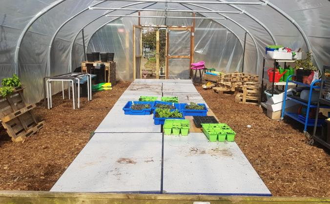 Watering system for the polytunnel