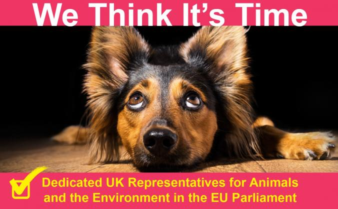 Animal Welfare Party EU Elections Fighting Fund