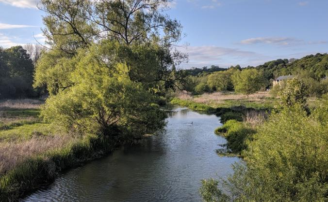 Buy land by the River Beane near Hertford North