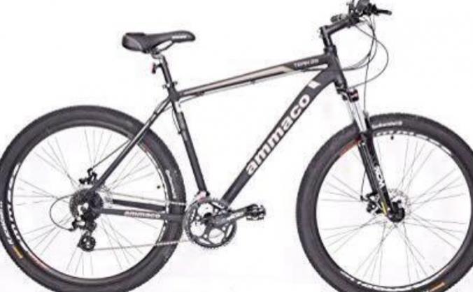 Joe's replacement bike
