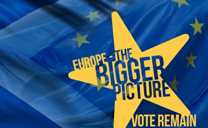 The Bigger Picture Remain Campaign