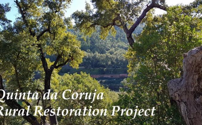 Quinta da Coruja Restoration Project