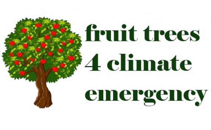 Fruit Trees for Climate Emergency