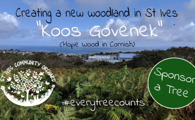Sponsor a Tree - Create a new woodland in St Ives