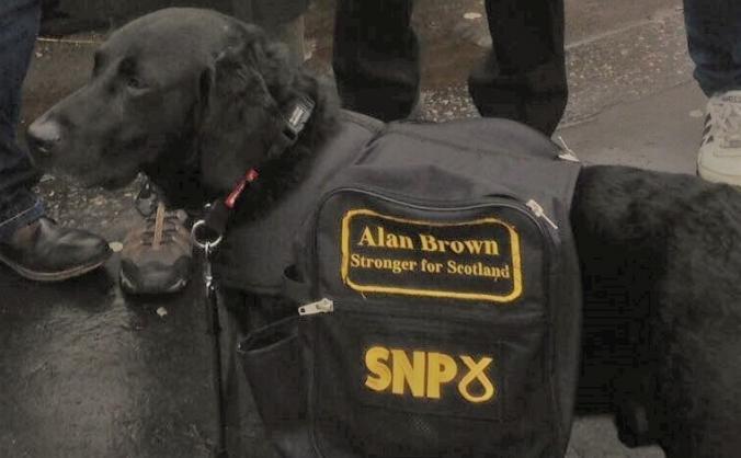 Re-elect Alan Brown as MP for Kilmarnock & Loudoun